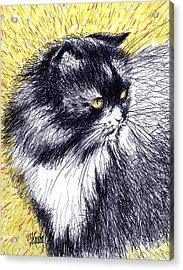 Looking Back Acrylic Print