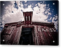 Looking Up Acrylic Print by Merrick Imagery