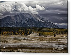 Looming Storm Acrylic Print by Timothy Johnson