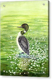 Acrylic Print featuring the painting Loon Art Judy Filarecki Watercolor by Judy Filarecki