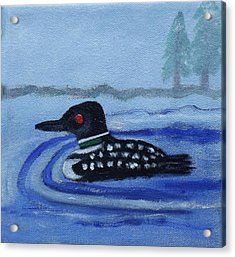 Loon On Lake Winnipeaukee Acrylic Print