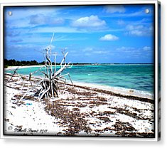 Acrylic Print featuring the photograph Lost Paradise The Sequel 2 by Danielle  Parent