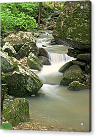 Lost Valley 1 Acrylic Print by Marty Koch