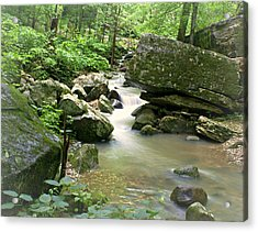 Lost Valley 2 Acrylic Print by Marty Koch