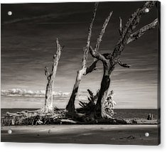 Lost World Acrylic Print by Mario Celzner