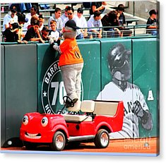 Lou Seal Fans Acrylic Print by Tap On Photo