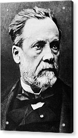 Louis Pasteur, French Microbiologist Acrylic Print by