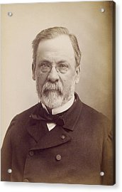 Louis Pasteur, French Microbiologist Acrylic Print by Humanities And Social Sciences Librarynew York Public Library