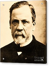 Louis Pasteur Acrylic Print by Pg Reproductions