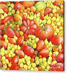 Love Apples ... Heirloom Tomatoes Acrylic Print by Susan A Walton