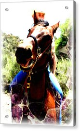 Love To Ride Acrylic Print by Amanda Eberly-Kudamik