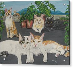 Lovely Cats Acrylic Print by Paintings by Gretzky