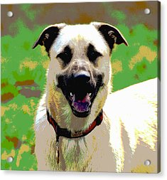 Loves To Smile Acrylic Print by Dorrie Pelzer