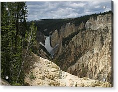 Acrylic Print featuring the photograph Lower Falls Of Yellowstone by Living Color Photography Lorraine Lynch