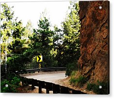 Acrylic Print featuring the photograph Lower Gold Camp Road Too by Clarice  Lakota