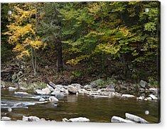 Loyalsock Creek Flowing Gently Acrylic Print