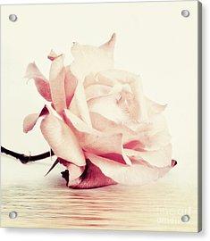 Lucid Acrylic Print