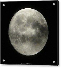 Luna Acrylic Print by Luis oscar Sanchez