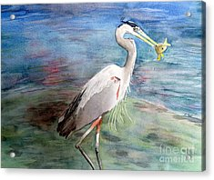 Lunchtime Watercolour Acrylic Print by Laurel Best