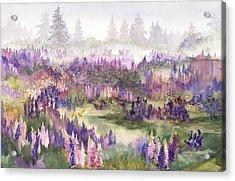 Lupines Galore Acrylic Print
