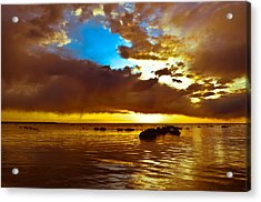 Lustre Acrylic Print by Jason Naudi Photography