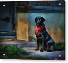 Mack Waits Acrylic Print by Suni Roveto