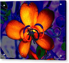 Madarin Petals Acrylic Print