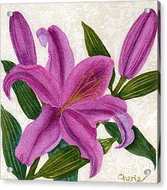 Magenta Lily Acrylic Print by Vikki Wicks