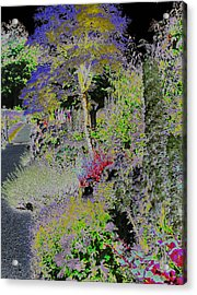 Magic Garden Acrylic Print by Fred Whalley