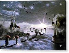 Magic Shrooms Acrylic Print by Nathan Wright