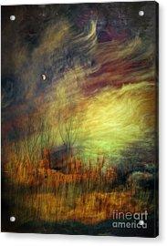 Magical Woods Acrylic Print by Emilio Lovisa