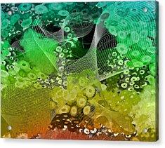 Magnification 3 Acrylic Print by Angelina Vick