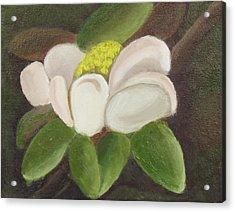 Magnificient Magnolia Acrylic Print