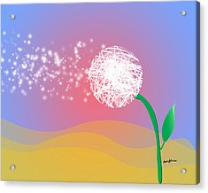 Make A Wish Acrylic Print by Anthony Caruso