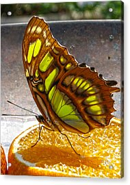 Malachite And Orange Acrylic Print