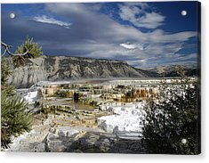 Acrylic Print featuring the photograph Mammoth Hot Springs by Geraldine Alexander