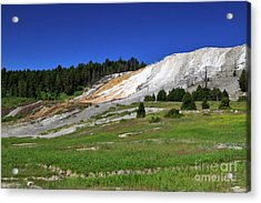Mammoth Hot Springs Lower Terrace Acrylic Print by Louise Heusinkveld