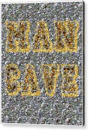 Man Cave Coin Mosaic Acrylic Print by Paul Van Scott