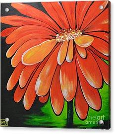 Mandarin Orange Acrylic Print by Holly Donohoe