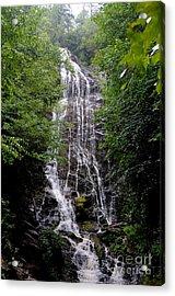 Mango Falls Acrylic Print by Randy Edwards