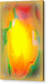 Mango In Mist Acrylic Print by Wendy Wiese