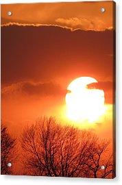 Mango Sunset Kansas Tree Silhouette Acrylic Print