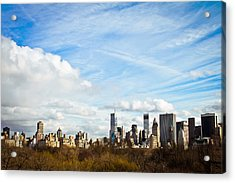 Manhattan Behing The Central Park Acrylic Print by Ezequiel Rodriguez Baudo