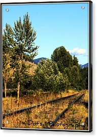 Manly Meadows Acrylic Print by Dorothy Hilde