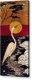 Mano's Egret Acrylic Print by Alexandra  Sanders