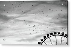 Many Birds Flying Over Giant Wheel In Berlin Acrylic Print