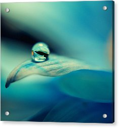 Marble Blue Acrylic Print by Wendy Riley- Athans
