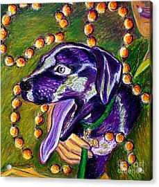 Mardi Dog Acrylic Print by D Renee Wilson