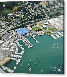 Marina And Coastal Community Acrylic Print by Eddy Joaquim