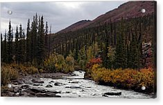 Acrylic Print featuring the photograph Marion Creek by Gary Rose
